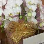 SHICHIDA栗東教室 頂いたお花
