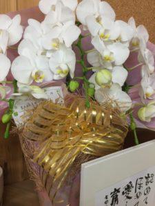七田式栗東教室 頂いたお花